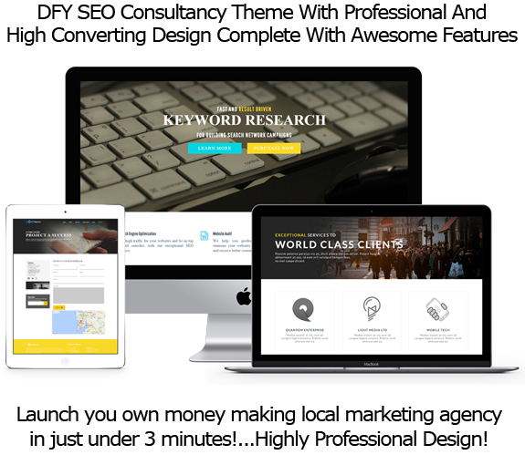 Instant Download SEO Agency WP Theme FULL License By Robert Phillips